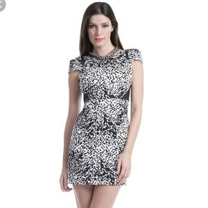 Beautiful Chic Tibi Leather Snow Leopard Dress